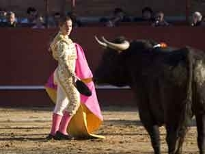 Here is the photo of the bullfighter that @nelisez was trying to upload previously. bull-fighter-med