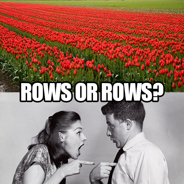 """Important question: which """"Rows"""" is it? rows"""